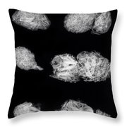 Owl Pellets Throw Pillow