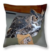 Owl Together Now Throw Pillow by LeeAnn McLaneGoetz McLaneGoetzStudioLLCcom