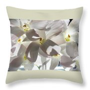 Oxalis Flowers Throw Pillow