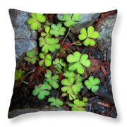 Oxalis Throw Pillow