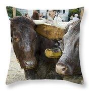 Oxen Pair Throw Pillow