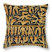 Oxidized Vitamin C Throw Pillow