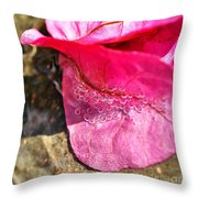 Oxygen In H20 Throw Pillow