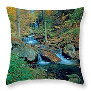 Ozone Falls And Rapids Throw Pillow
