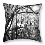 Pa. Country Stream Throw Pillow