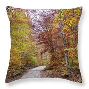 Pachaug State Forest Throw Pillow