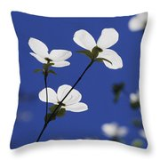 Pacific Dogwood Blossoms Cornus Throw Pillow