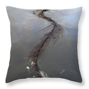 Pacific Giant Throw Pillow