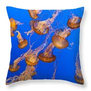 Pack Of Jelly Fish Throw Pillow