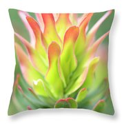 Pagoda Protea Throw Pillow