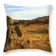 Painted Afternoon Throw Pillow