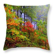 Painted Autumn Throw Pillow by Carolyn Wright