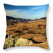 Painted Blue Basin Throw Pillow