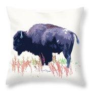 Painted Buffalo Throw Pillow