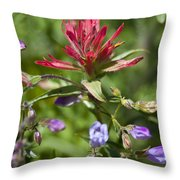 Painted-cups Of The Hillside - 2 Throw Pillow