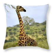 Painted Giraffe Throw Pillow