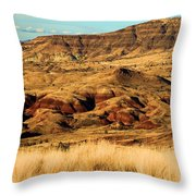 Painted Hills In Sheep Rock Throw Pillow