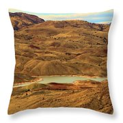 Painted Hills Lake Throw Pillow