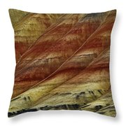Painted Hills Lines Throw Pillow
