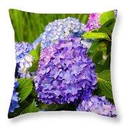 Hydrangea In Garden - Painted Throw Pillow