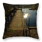 Painted In Light Throw Pillow