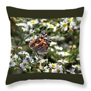 Painted Lady - Surrounded In White Throw Pillow