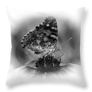 Painted Lady 1 Throw Pillow