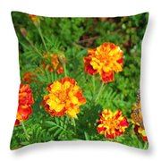 Painted Lady Butterfly In The Marigolds  Throw Pillow