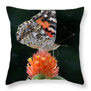 Painted Lady In A Shower Throw Pillow