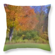 Painted Leaves Of Autumn Throw Pillow