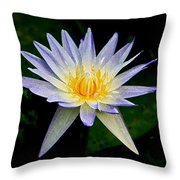 Painted Lily And Pads Throw Pillow