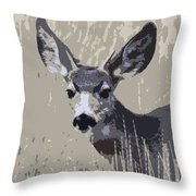 Painted Muley Throw Pillow