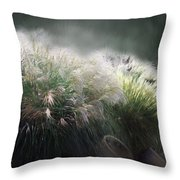 Painted Pampas Throw Pillow
