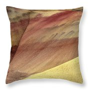 Painted Patterns Throw Pillow by Mike  Dawson