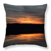 Painted Picture Perfect Throw Pillow