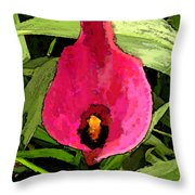 Painted Pink Cala Lily Throw Pillow