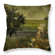Painted Plains  Throw Pillow