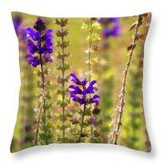Painted Purple Sage Salvia Throw Pillow