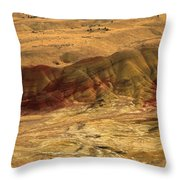Painted Ridge Throw Pillow