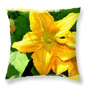 Painted Squash Blossoms Throw Pillow