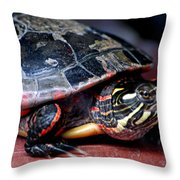 Painted Turtle Michigan Throw Pillow