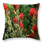 Painting In The Brush Throw Pillow