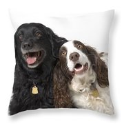 Pair Of Canine Friends Throw Pillow