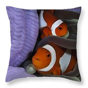 Pair Of Clown Anemonefish, Indonesia Throw Pillow