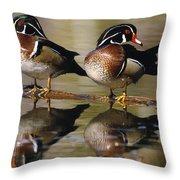 Pair Of Wild Birds Throw Pillow