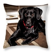 Paisley Throw Pillow