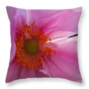 Pale Lavender Throw Pillow
