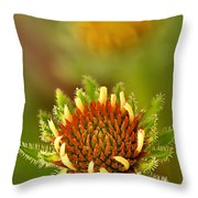 Pale Purple Coneflower Bud Throw Pillow