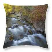 Palisades Autumn Throw Pillow