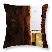 Palm And Wall Throw Pillow